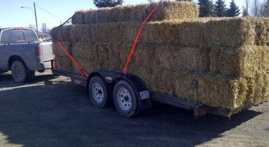 70bales delivered from Portage